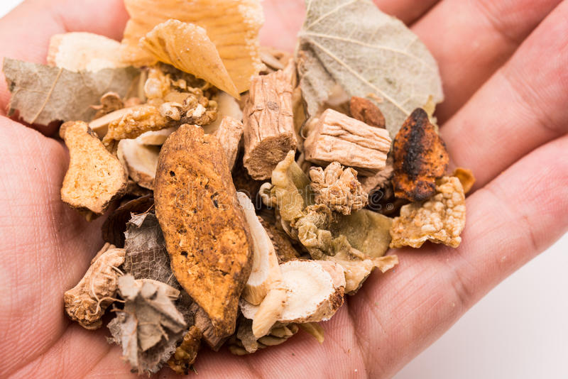 Holding Chinese traditional herbs. Holding handful of Chinese traditional herbs stock photography