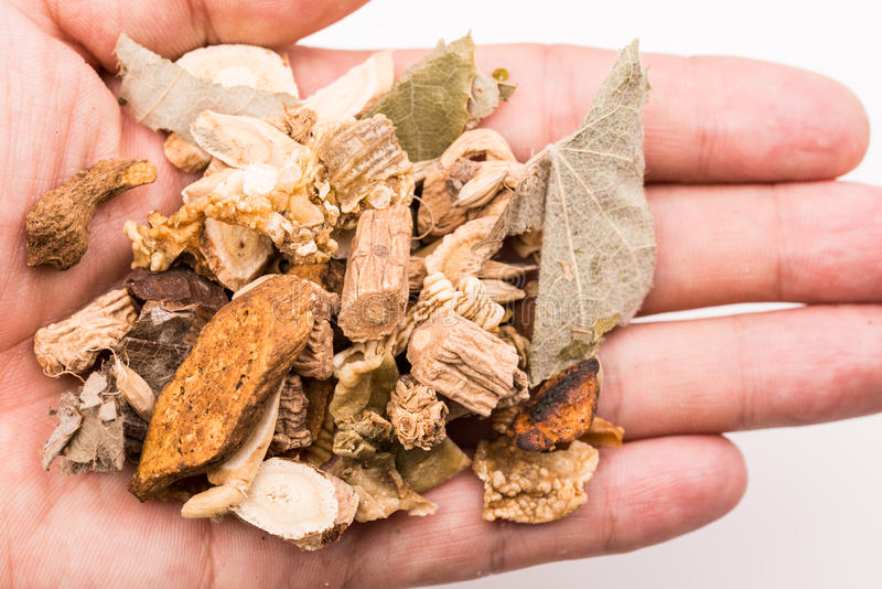 Holding Chinese traditional herbs. Holding handful of Chinese traditional herbs stock photos
