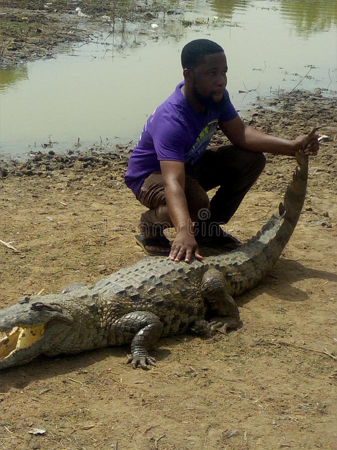 Holding the Crocodile once again at Paga stock image