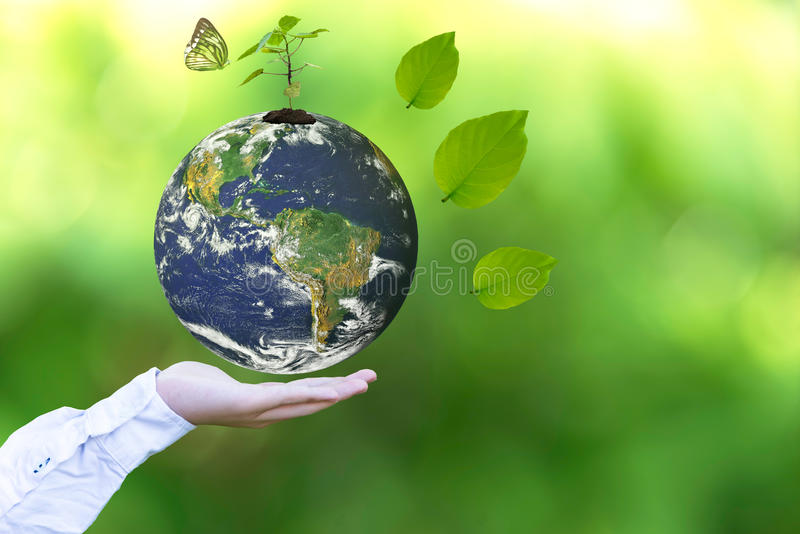 Holding a glowing earth globe in his hands with butterfly. royalty free stock photos
