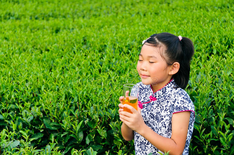 Download Holding Green Tea Asian Children Stock Image - Image: 28601457