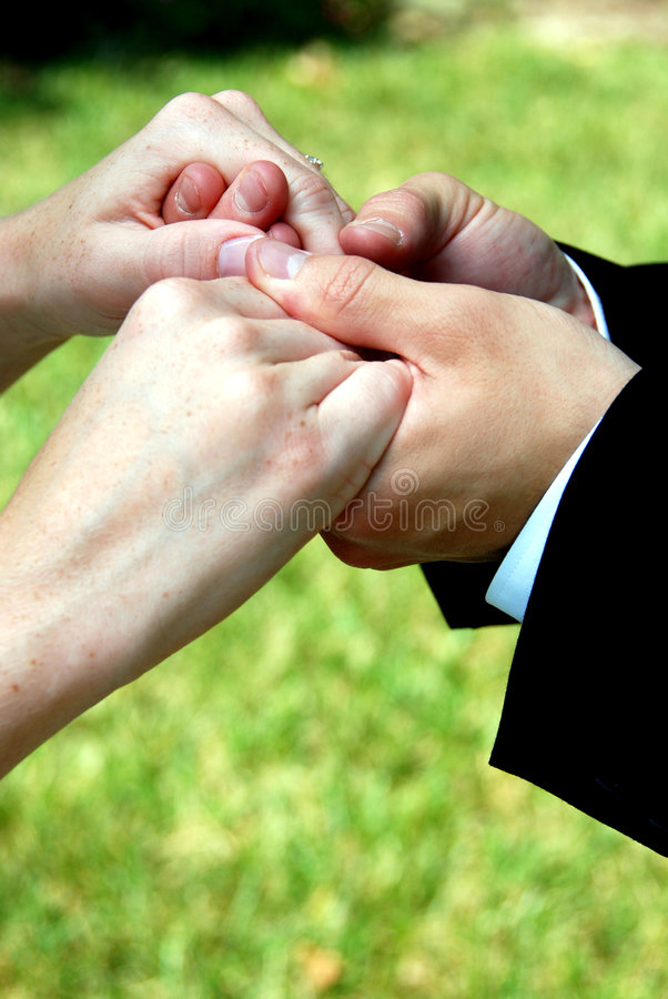 Download Holding Hands stock image. Image of care, fingers, enjoy - 5597149