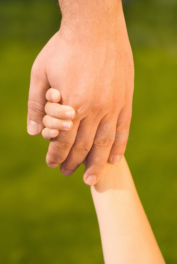 Download Holding Hands stock photo. Image of fingers, hand, green - 6465548
