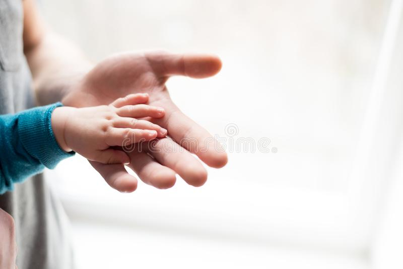 Holding Hands. hand the sleeping baby in the hand of father close-up. hands on white background royalty free stock photos