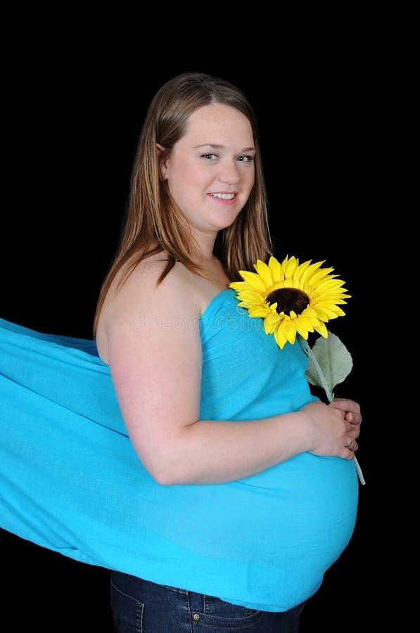 holding isolerad gravid strålningssolroskvinna royaltyfri foto