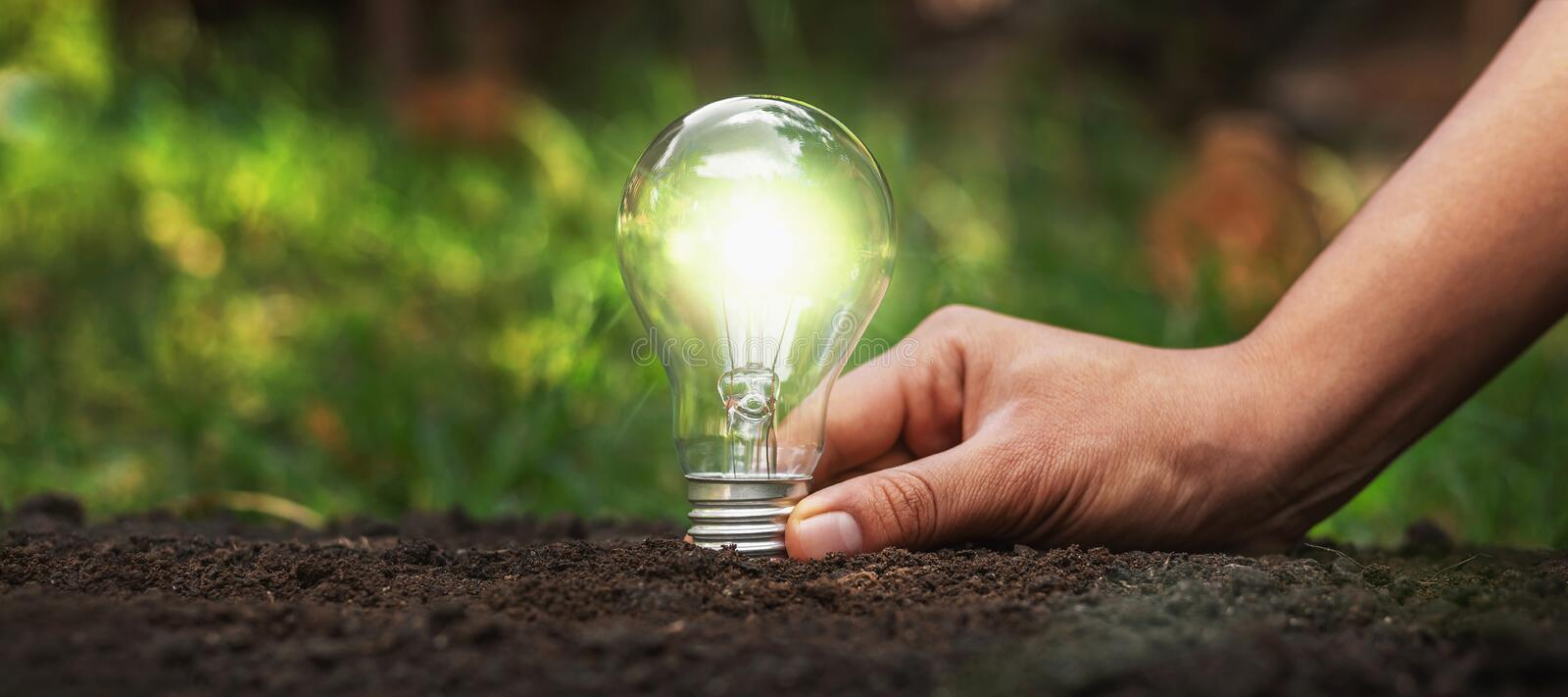 Holding a light bulb on the ground Energy saving concept. Soil, sustainability, innovation, idea, plant, nature, ecology, sustainable, electric, technology stock photo