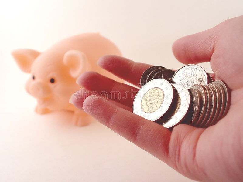 Holding Money and a Piggy Bank. Person holding money to put in piggy bank royalty free stock photo