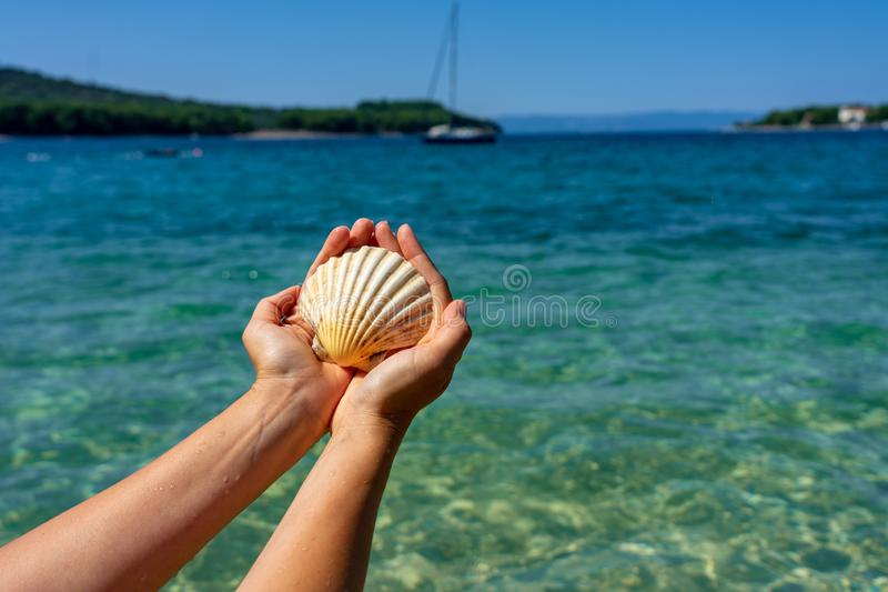 Holding shell on the beach blue sea background vacation stock photo