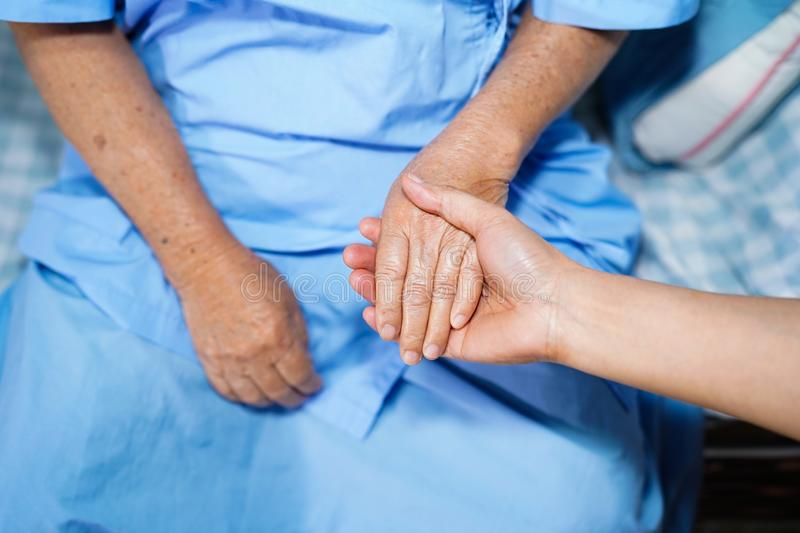 Holding Touching hands Asian senior or elderly old lady woman patient with love, care. Helping, encourage and empathy at nursing hospital ward : healthy strong stock photo