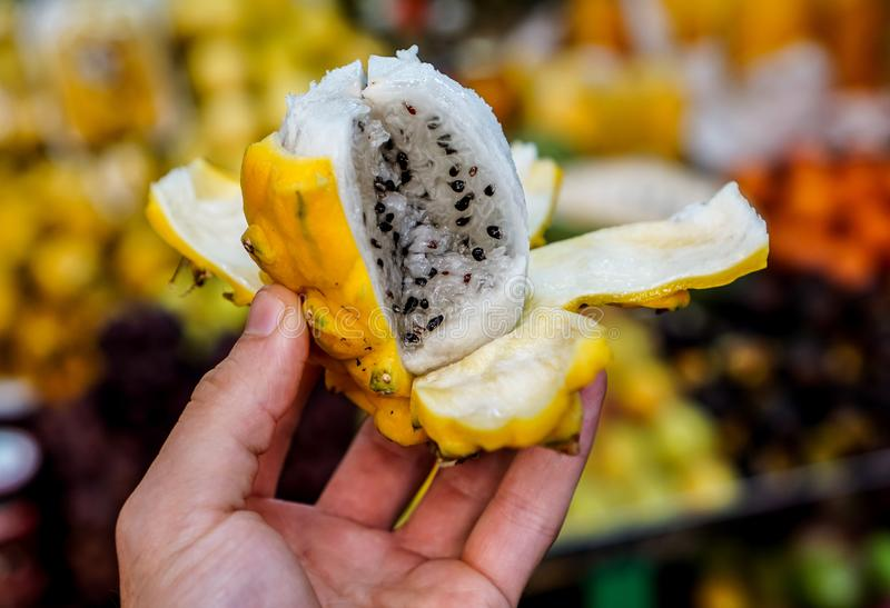 Dragon Fruit in Colombia royalty free stock photos