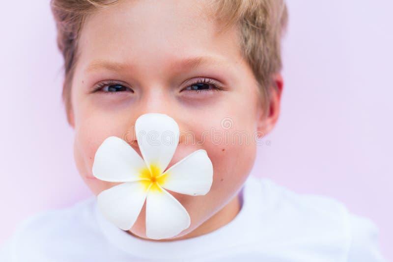 Holdingblumenmund-Rosahintergrund des kleinen Jungen stockbilder