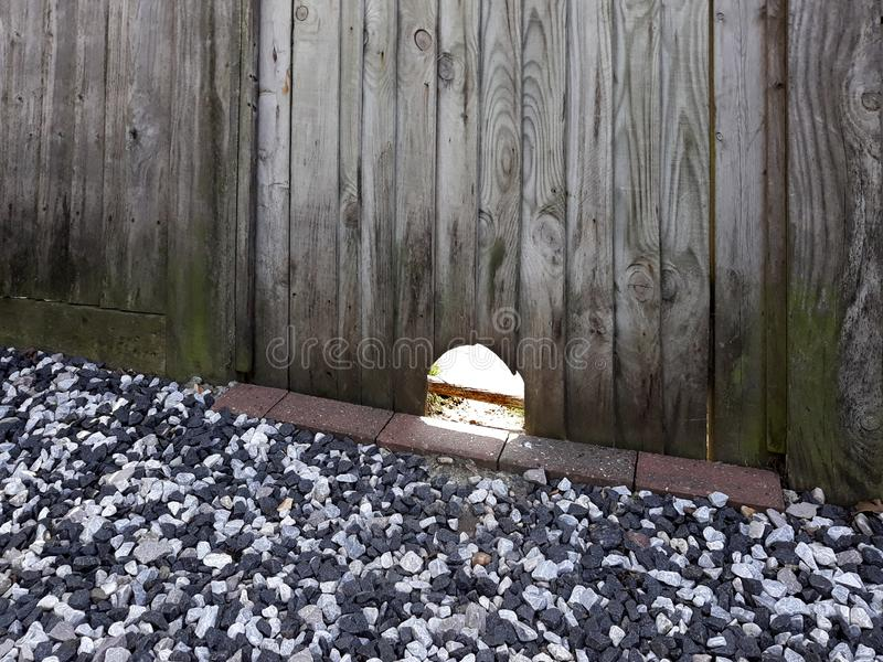 Fence hole. Hole in a wooden fence cut out to help hedgehogs royalty free stock photo