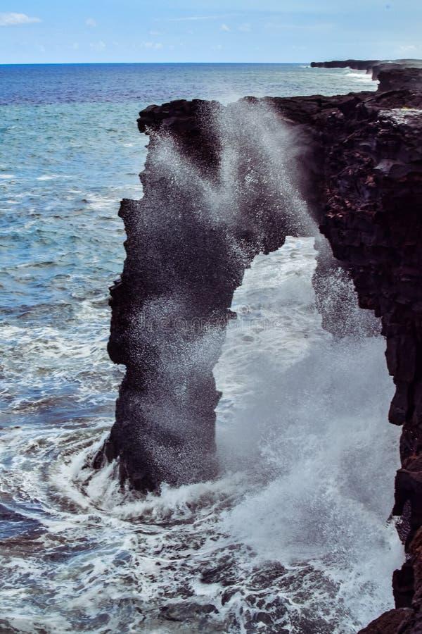 Holei havsbåge arkivfoton