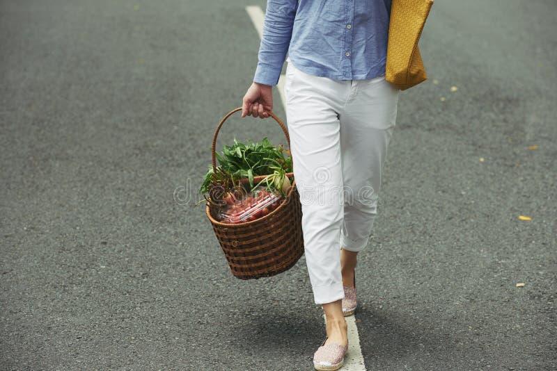 Holen des Korbes des Gemüses lizenzfreies stockfoto