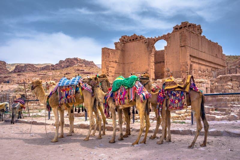 Holen in zandsteen, kolommen en ruïnes van de oude Bedouin stad van Petra, Jordanië stock afbeeldingen