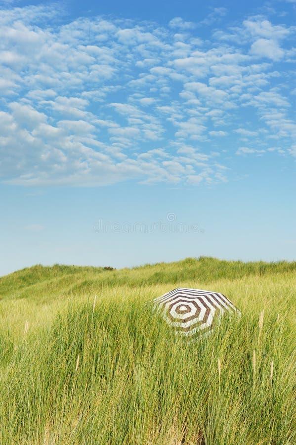 holendera brzegowy wydmowy krajobraz zdjęcia royalty free
