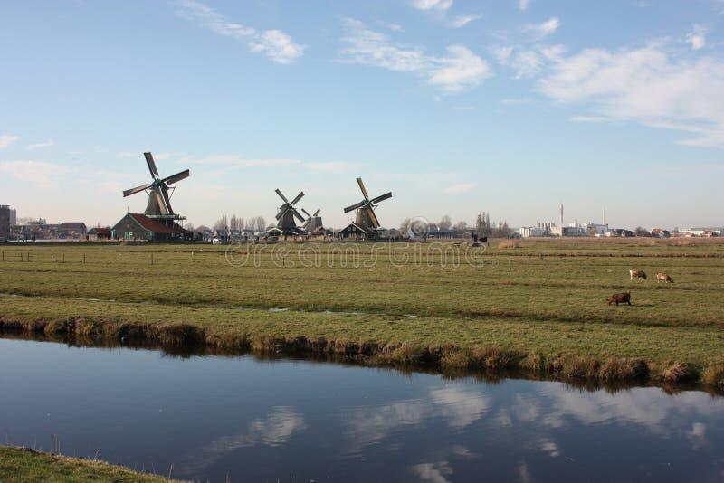 Holenderski antyczny wiatraczek budujący od drewna typowa struktura holandie starzy prac narzędzia na rzece w wiosce Zaanse zdjęcie royalty free
