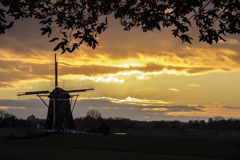 Holenderski obrządkowy wschód słońca zdjęcia royalty free