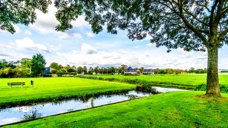 Holenderski polderu krajobraz w holandiach obraz royalty free