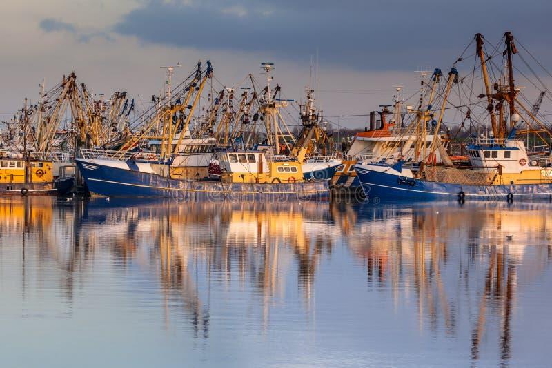 Holenderski rybołówstwo w Lauwersoog schronieniu obrazy stock