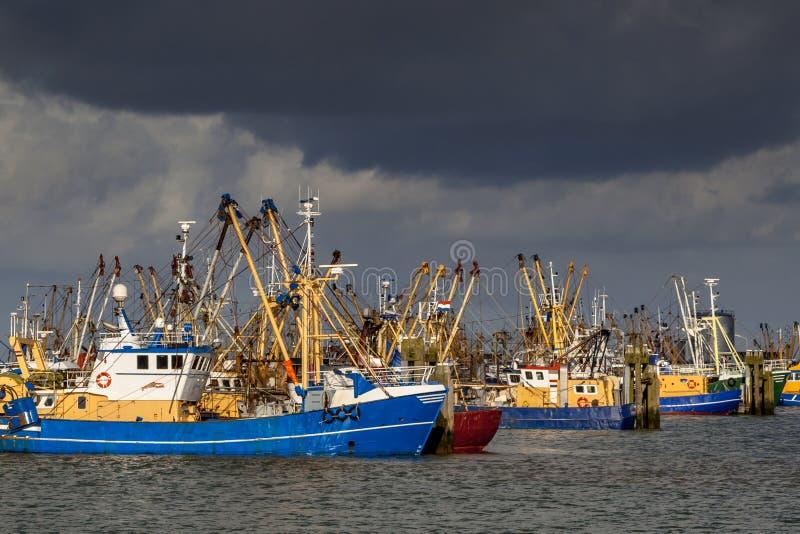 Holenderskie łodzie rybackie w Lauwersoog schronieniu zdjęcia royalty free
