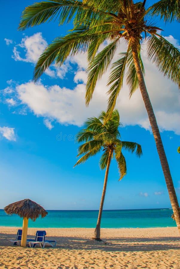 Holguin, Куба, Playa Esmeralda Зонтик и 2 кресла для отдыха вокруг пальм Тропический пляж на карибском море стоковые фотографии rf