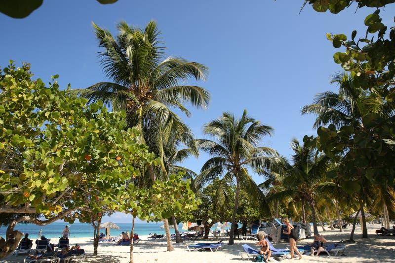 Holguin, Cuba 11 25 Plage 2018 tropicale avec la mer bleue, le ciel bleu et les paumes photos libres de droits