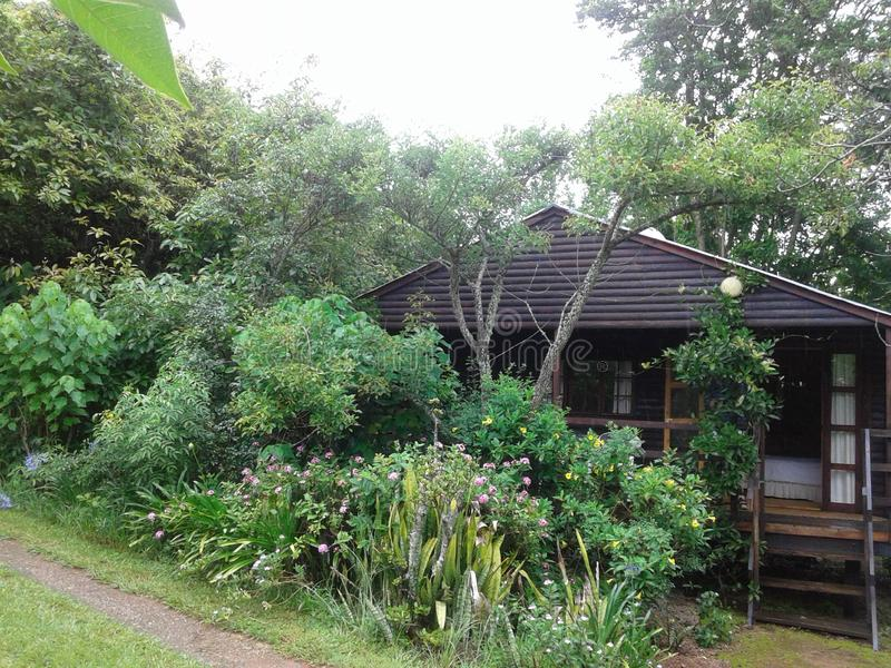 Holiday Cabin. Small hideaway cabin in the Lovely SouthAfrica stock images