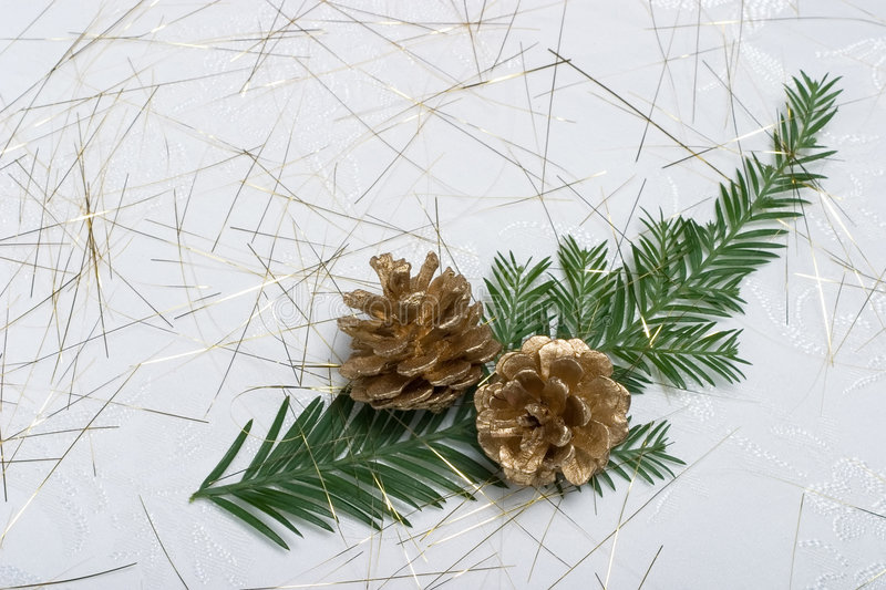 Download Holiday Card With Fir Branch And Golden Cones Stock Image - Image: 1424311