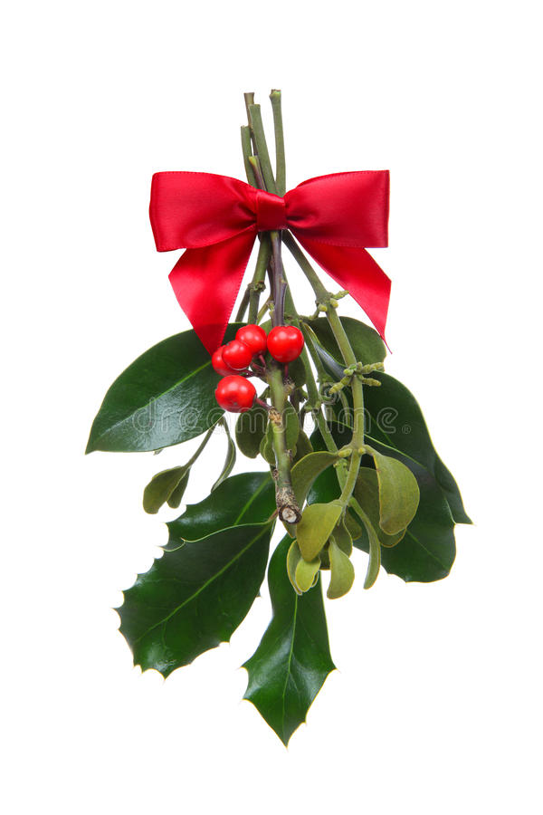 Holiday Christmas Mistletoe royalty free stock image