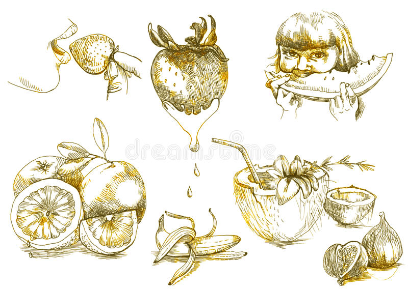 Download Holiday and fruits stock illustration. Image of melon - 24789660