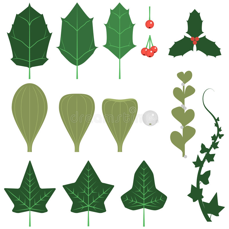 Download Holiday leaves and sprigs stock vector. Image of holly - 5201598