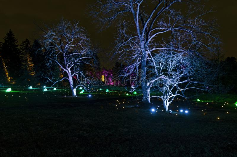 Holiday Lights and Ornaments Illuminate Park. Colorful holiday lights and ornaments illuminate park trees and field in evening royalty free stock photography