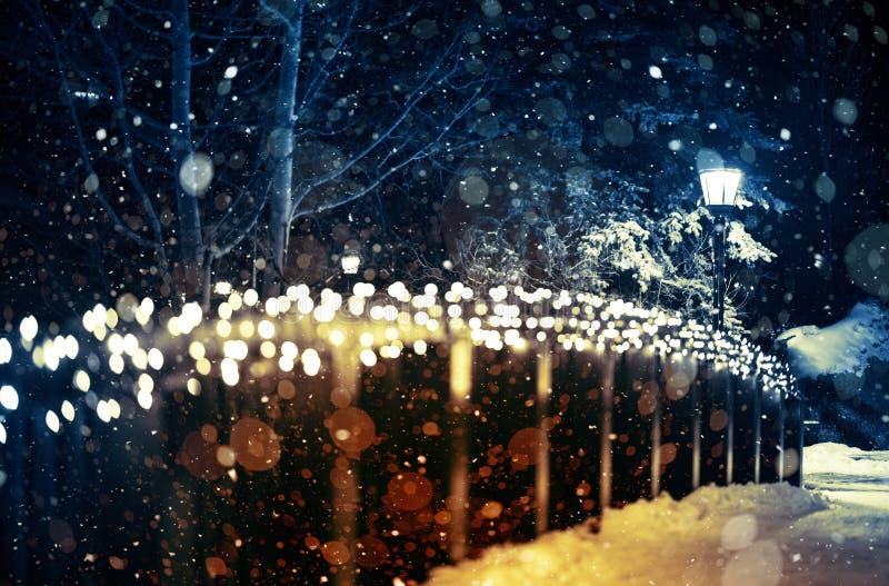 Holiday Lights Scenery stock image