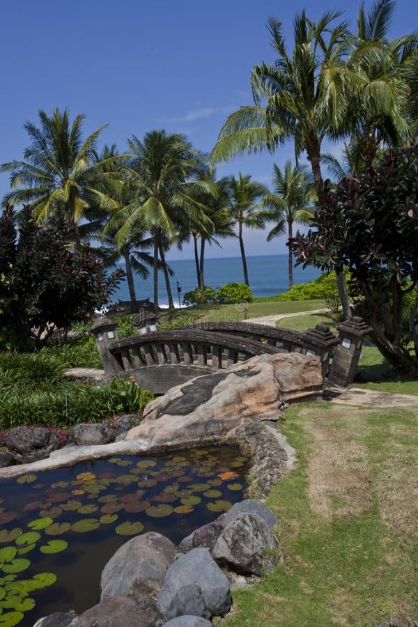 Download Holiday Resort Stock Photo - Image: 22685780