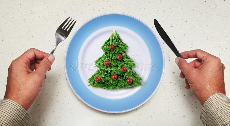 Holiday salad on a plate royalty free stock image