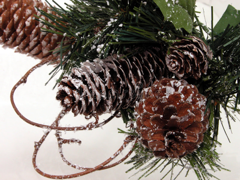 Holiday & Seasonal: Christmas Pine Cone & Artificial Snow. Winter pine cone and artificial snow Christmas decoration. Close up on an off white background