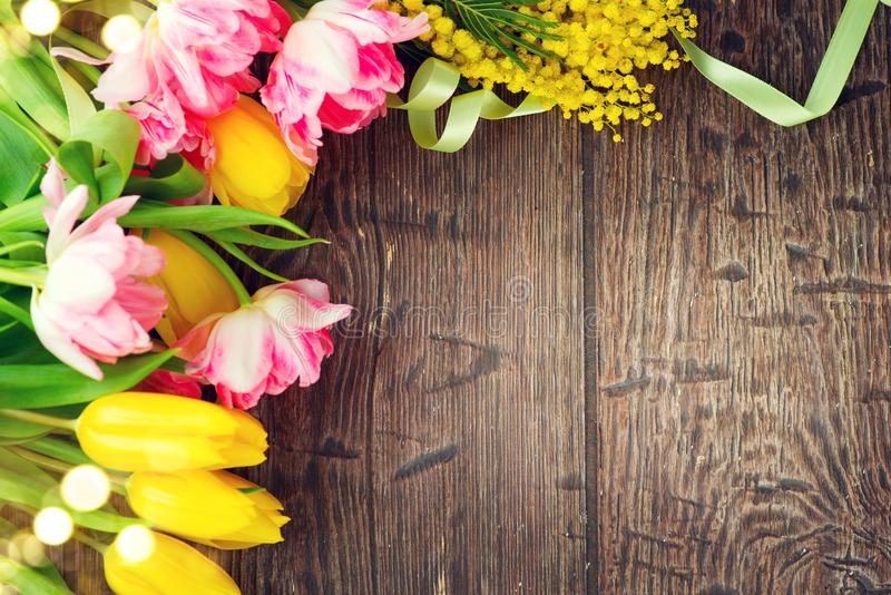 Holiday spring background. Mother`s Day holiday wooden backdrop frame decorated with colorful tulip flowers and mimosa flower royalty free stock photo