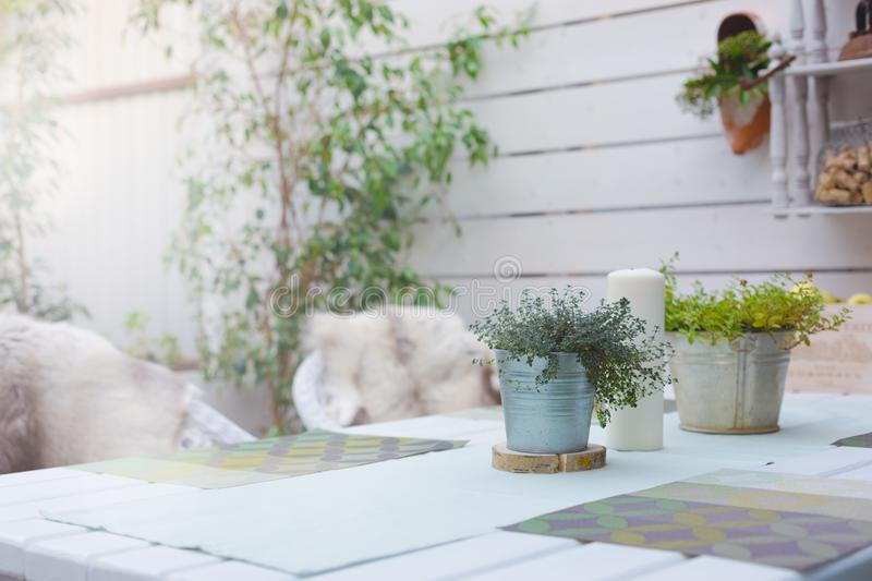Holiday Summer or sping country outside table setting with linen napkins and green plants in iron pots. Copy space. Toned royalty free stock images