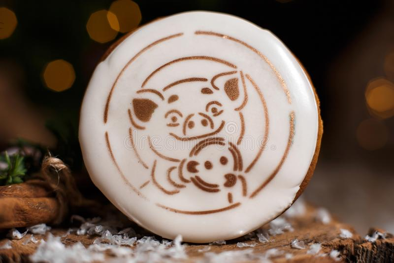 Holiday traditional food bakery. Gingerbread lucky Pig in cozy warm decoration with garland lights stock images