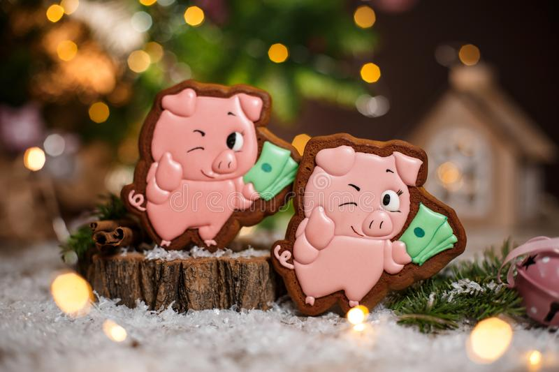 Holiday traditional food bakery. Gingerbread two lucky pink pig with bundle of money in cozy warm decoration with garland lights.  stock photography