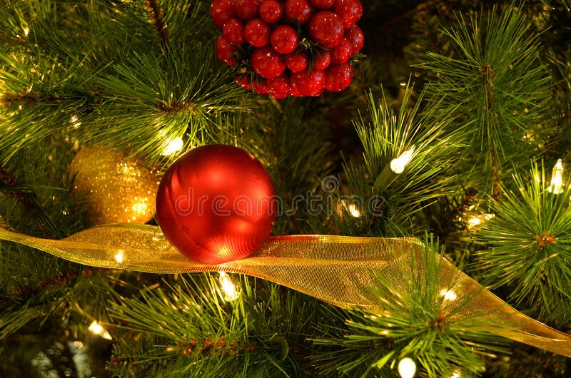 Holiday Tree stock images
