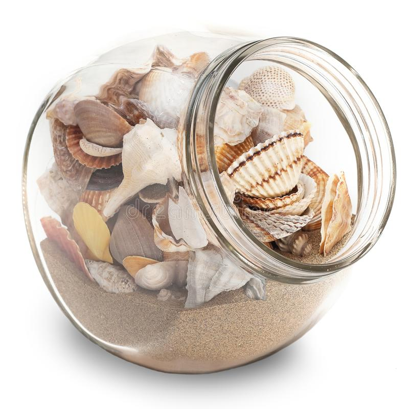 Download Holiday trophy stock photo. Image of beach, conch, copy - 18936320