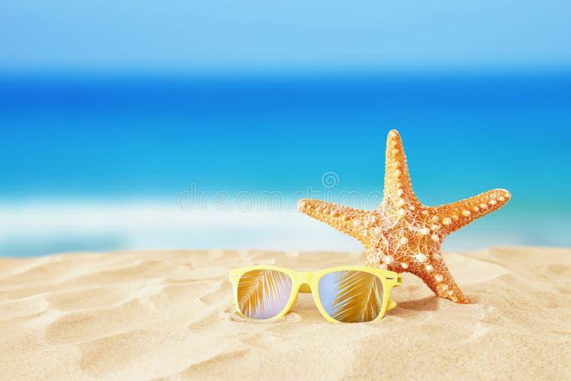 holidays playa, gafas de sol y estrellas de mar de la arena delante del fondo del mar del verano con el espacio de la copia imagen de archivo