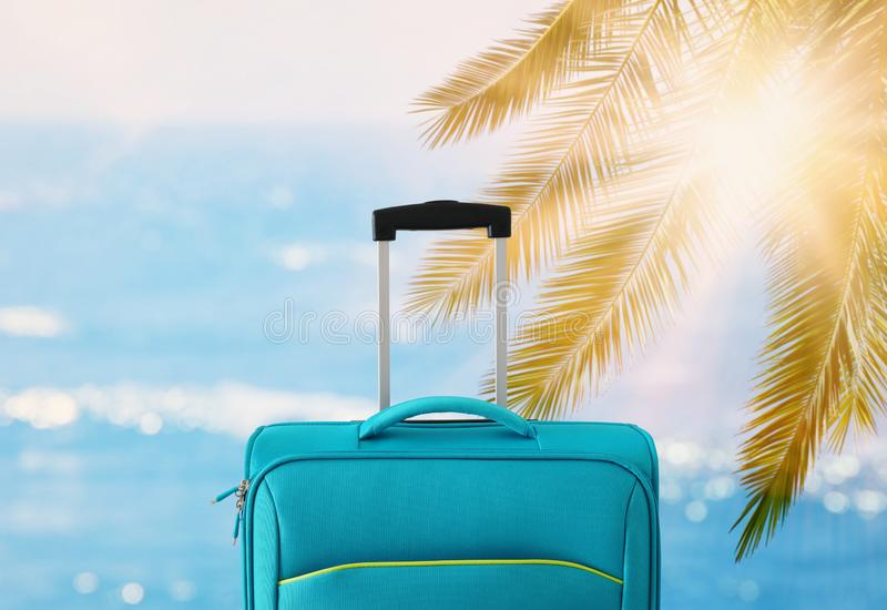 Holidays. travel concept. blue suitcase infront of tropical background.  royalty free stock image