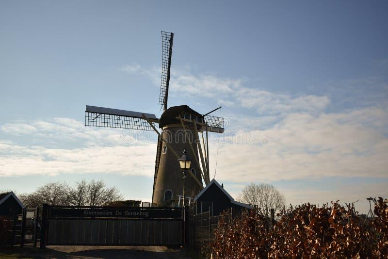 Holländare Ol för lantgård för väderkvarnHolland Beautiful Sky Clouds Mill djur royaltyfri bild