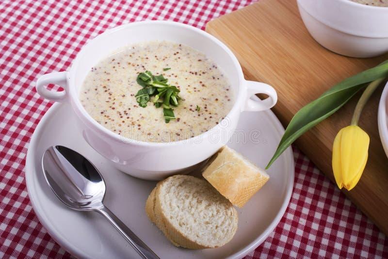 Holländische Mustartd Suppe und Tulpe stockbild