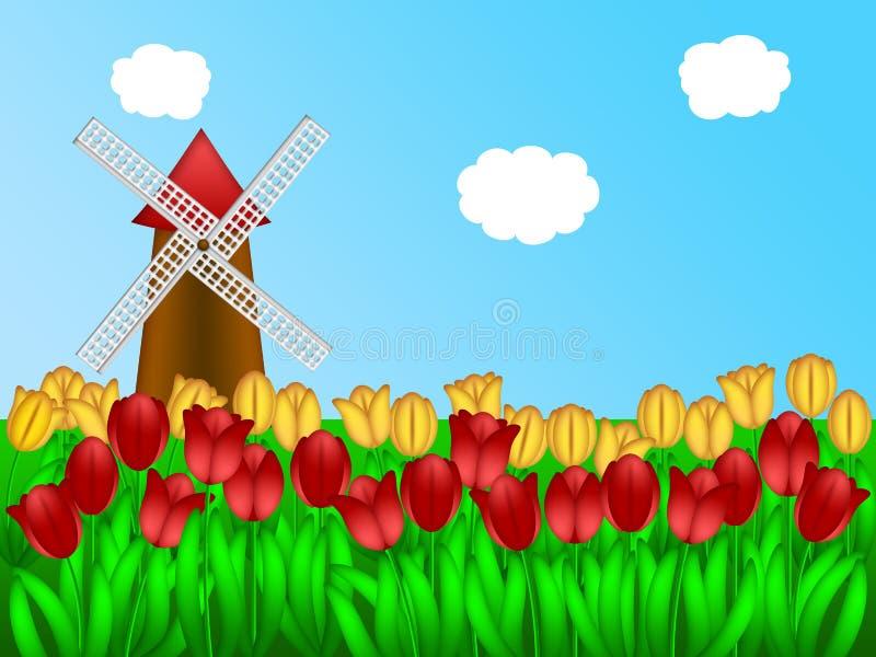 Holländische Windmühle in der Tulpe-Feld-Bauernhof-Abbildung lizenzfreie abbildung