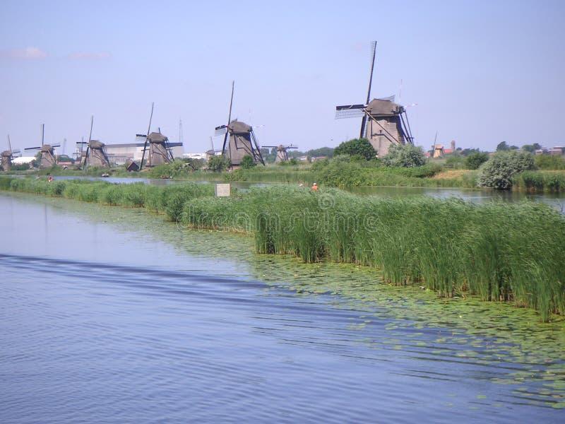 Holländische Windmühlen entlang Kanal lizenzfreie stockbilder