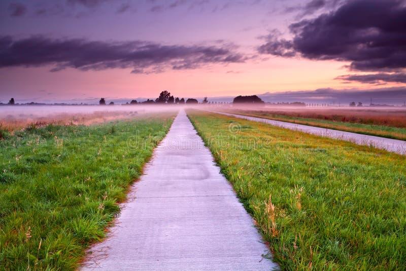 Cykelväg till och med dimmiga ängar för sommar fotografering för bildbyråer